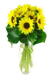Image result for sunflowers in a vase