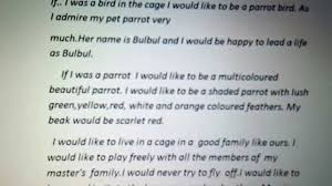 essay if i was a bird in a cage essay if i was a bird in a cage