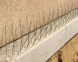 Problems with BIRDS on Your Roof? Bird-Proofing TIPS Part 4 ...