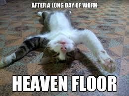 Tired Cat memes | quickmeme via Relatably.com