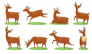<b>Christmas Deer</b> Images   Free Vectors, Stock Photos & PSD