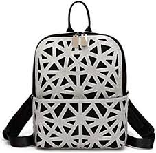 Silvers - Laptop Bags / Luggage & Travel Gear ... - Amazon.com