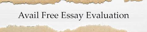mba essays sample and review free editing by apexwriters