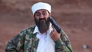 Image result for Tere Bin Laden Dead or Alive (2016)