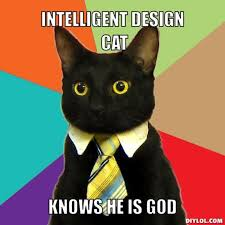 DIYLOL - INTELLIGENT DESIGN CAT KNOWS HE IS GOD via Relatably.com