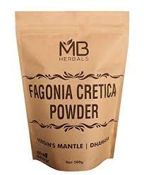 Amazon.com: MB Herbals Fagonia cretica Powder 500g   1.10 lb ...