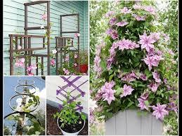 Какие типы опор можно использовать для <b>растений</b> на даче ...
