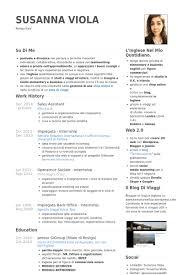 Sales Assistant CV Sample Professional CV Writing Services
