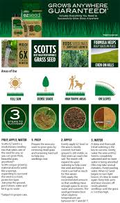 scotts lb ez seed tall fescue the home depot info guides