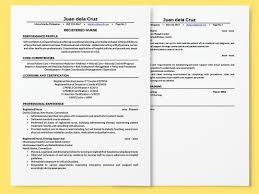 registered nurse resume resumes cv registered registered nurse resume