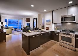 studio apartment furniture. Minimalist Furniture For Studio Apartment Decorating Kitchen Island L