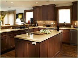 Kitchen Improvements Your Home Improvements Refference Types Of Kitchen Cabinets Wood