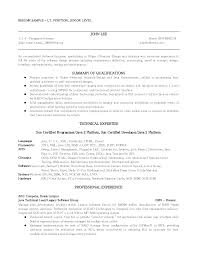 Professional Summary  how to write a professional profile   resume