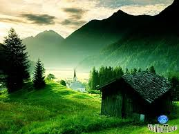 best essay on beauty of nature   essay for you  best essay on beauty of nature   image