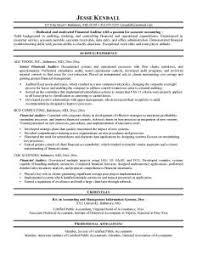 auditor resume   best resume exampleexternal auditor resume
