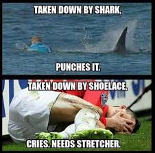 Mick Fanning's South African Shark Encounter: The Memes & Jokes ... via Relatably.com
