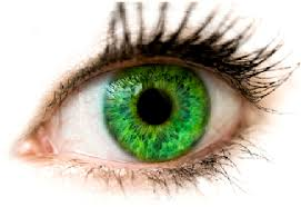 """Algunas peculiaridades de los ojos"" – Philip K. Dick (breve, ciencia-ficción) Images?q=tbn:ANd9GcTTFkH8HBomQ4DH986PKcjG3F8vcEk2KGkqB6PEbsVG6NgbPCJkHA"