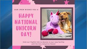 Adoption room to be named after now-famous <b>dog</b> with purple <b>unicorn</b>