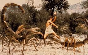 Image result for 1981 clash of the titans