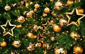 Картинки по запросу фото новогодней ёлки