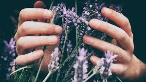 Дачный сезон: как восстановить кожу рук и ног после огорода