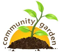 Image result for community garden images