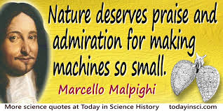 Admiration Quotes - 25 quotes on Admiration Science Quotes ...