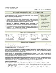 Sales Account Executive Resume Example sales account executive resume example