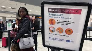 84 pregnant women in florida infected zika virus the daily 84 pregnant women in florida infected zika virus