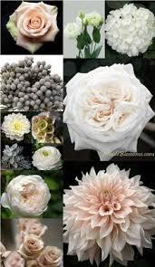 wedding flowers garden roses lisianthus dhalia hydrangea ranunculous dusty miller silver brunea scabiosa pods chad garden pod