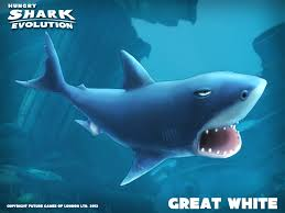 1000 ideas about great white shark games sharks great white shark hungry shark evolution