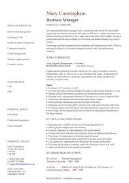 management cv template  managers jobs  director  project    business manager cv