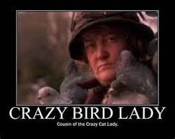 Bildresultat för crazy birdlady
