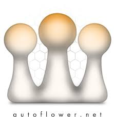 <b>Mars Hydro TS</b>-<b>2000</b> giveaway | The Autoflower Network - AFN