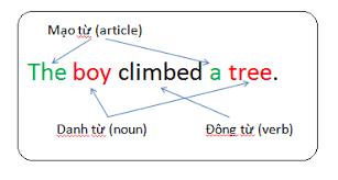 viết câu đúng cấu trúc