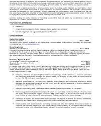r eacute sum eacute  jovana banovic resume 1