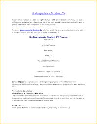 undergraduate student curriculum vitae sample letter format mail undergraduate student curriculum vitae sample