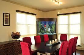 aquarium for office room aquarium office