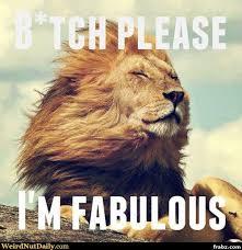 I'm Fabulous Meme Generator - Captionator Caption Generator - Frabz via Relatably.com