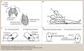 ccn rauen et al figure  figure 1