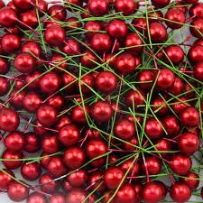 200pcs Red <b>Pearl</b> Plastic <b>Stamens</b> Bead Artificial Flower small ...