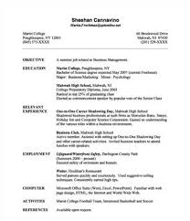 what do you put on a resume   best template collectionwhat do you put on a resume if you have no past employment