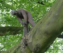 İlginç Ağaç Resimleri