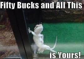Pictures > funny smile meme via Relatably.com