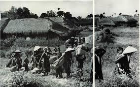 Kết quả hình ảnh cho cuộc di cư 1954