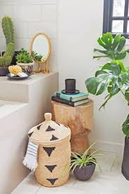 room plants x: how to create an indoor garden