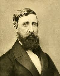 henry david thoreau later years 1851 1862