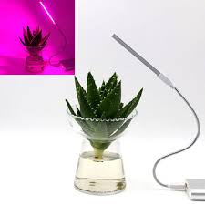 5v 2.5w 10 red 4 blue portable <b>usb led plant grow lamp</b> for home ...