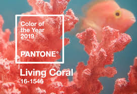 Pantone Color of the Year <b>2019</b> Palette Exploration | Living Coral 16 ...