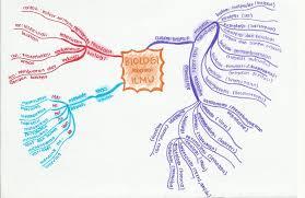 cabang ilmu biologi